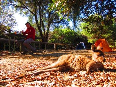 Australia_2012_366.jpg