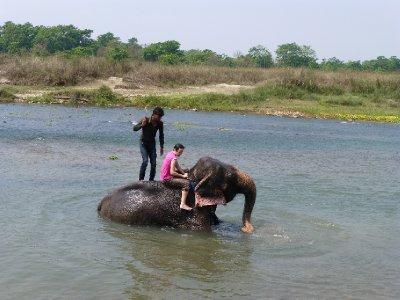 Chitwan-231.jpg