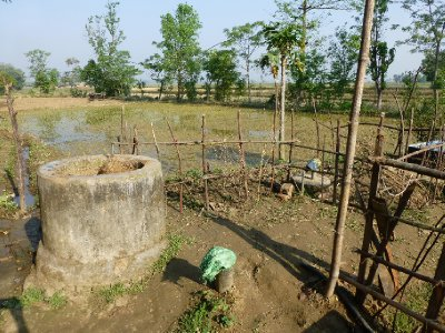 Chitwan-259.jpg