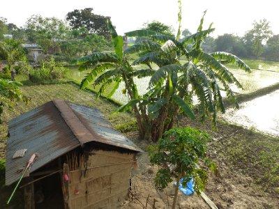 Chitwan-269.jpg