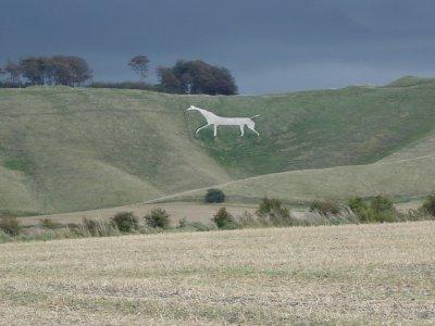 White horse, Cherhill