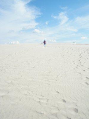 Skagen5   Raabjerg Mile - shifting sand dunes