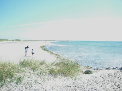 Skagen8   Grenen - the tip of Denmark