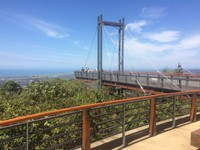 The Forest Sky Pier, Sealy Lookout