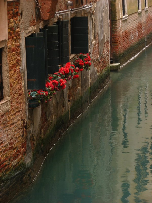 Windowboxes and canal