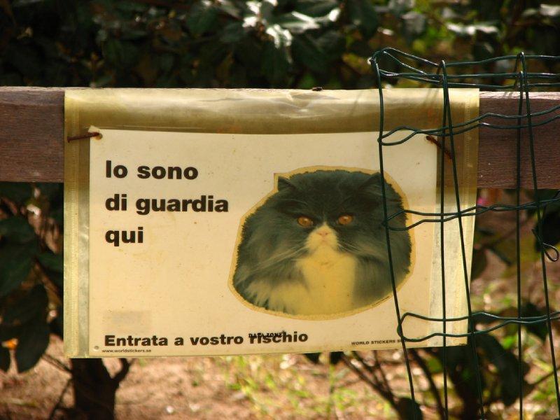 Guard cat warning sign