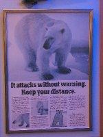 Polar bear warning poster
