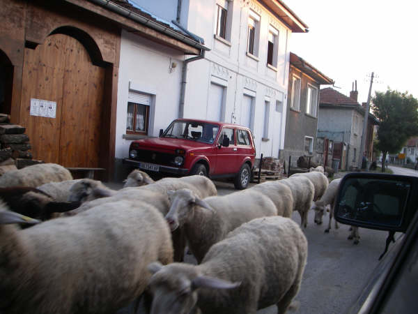 Bulgarian traffic-jam