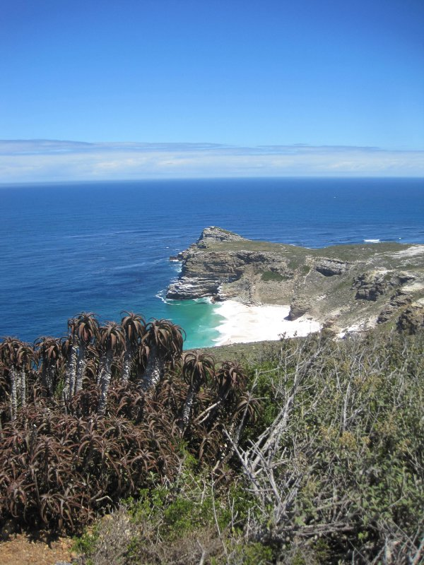 View from Cape Point Peak Hike