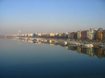 reflection on the danube