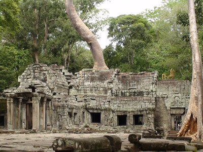 Ta Prohm- stunning trees growing out of the temple walls