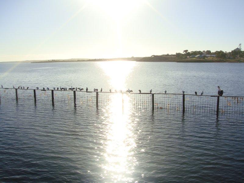Beautiful sunny day in Streaky Bay