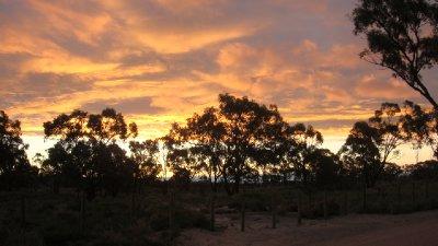 Waikerie sunset