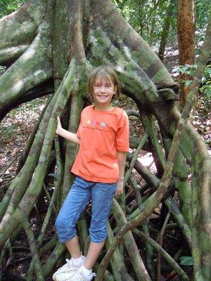 Lena and the banyan tree