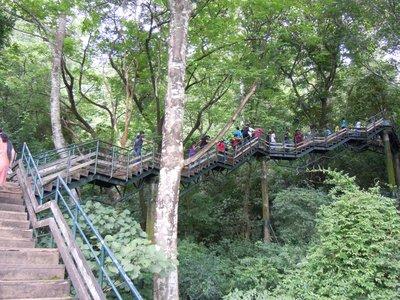 Pseudo canopy walk