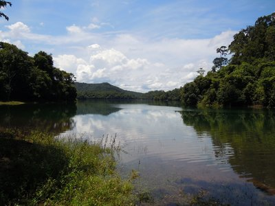 Serene lake in the reserve