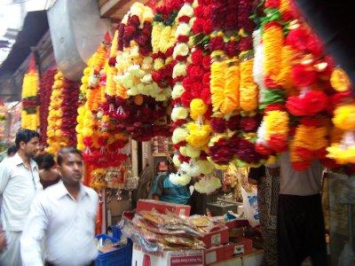 Delhi__52_.jpg