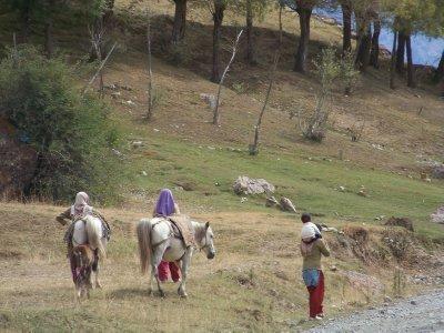 India 2011 649