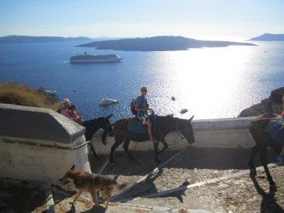 Andrew riding his donkey!!