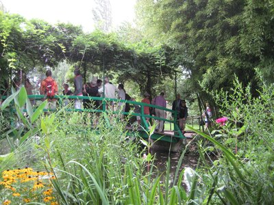 Giverny - Monet's gardens