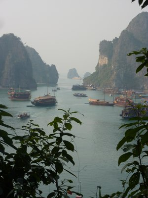 Halong Bay from the Top of the ''Surprising Cave''