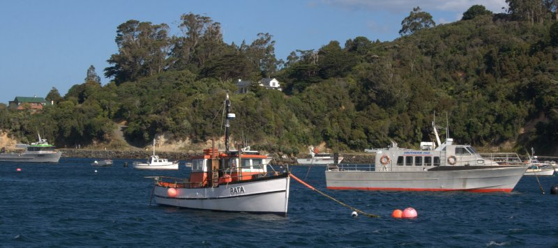 Fishing boats in Halfmoon Bay