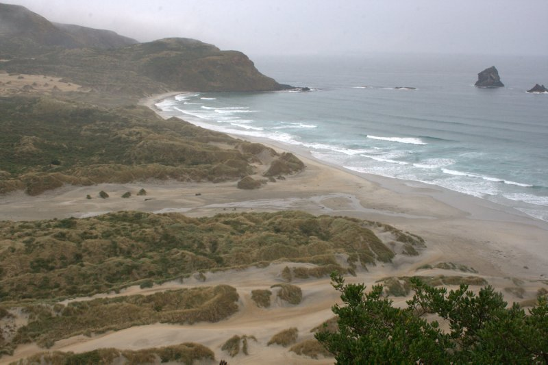 Sand Dunes at Sandfly Bay