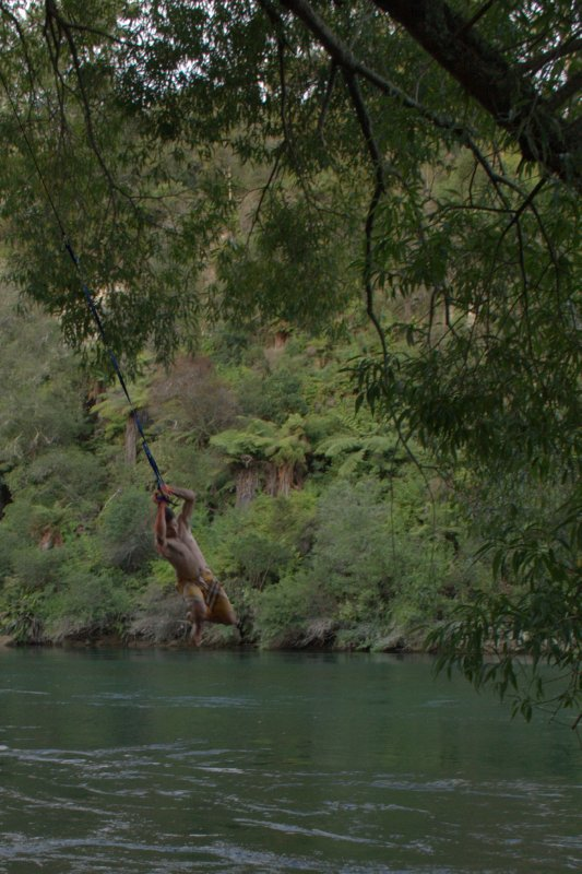Rope Swing into Waikato River