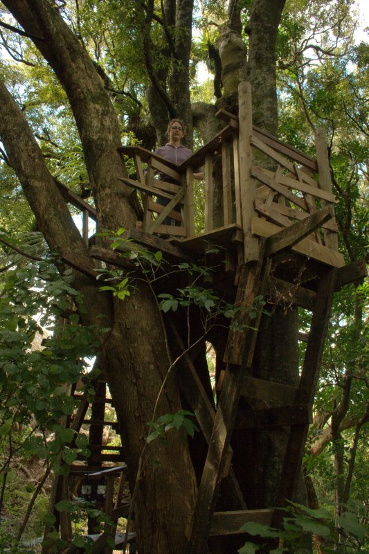 Julie in Treehouse