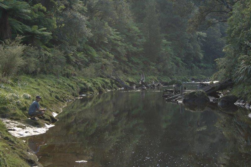 Fishing in Tangarakau River