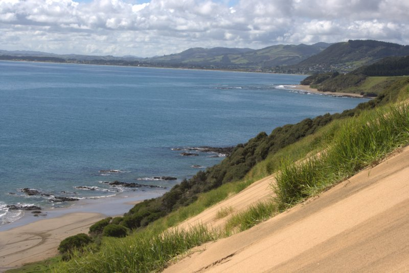 View from Tauroa Point Reserve