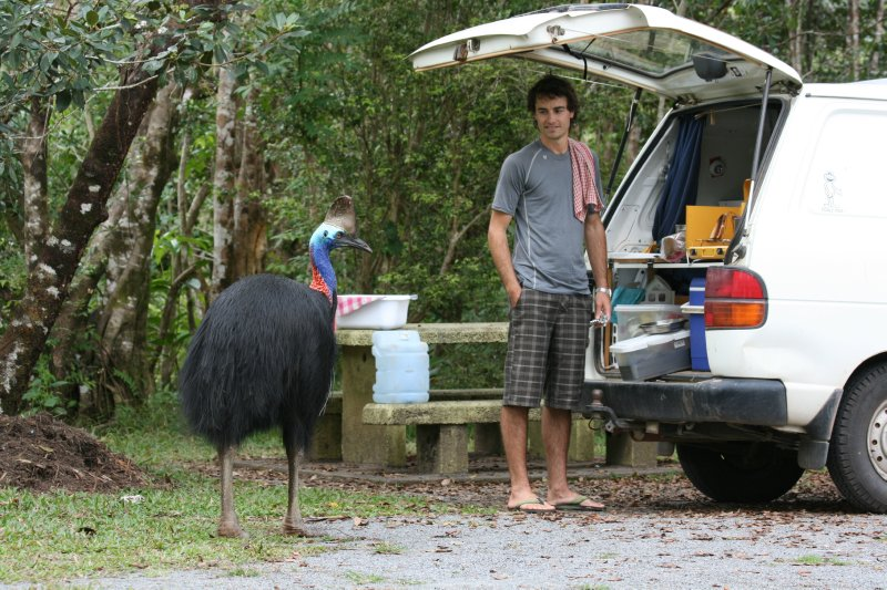 Cassowary hangin' with Nate and Cliff