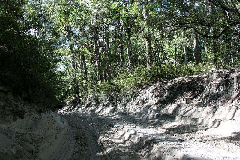 4WD Sandy Roads through Fraser Island