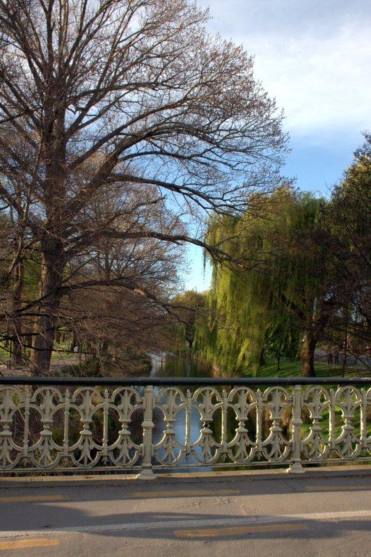 CHCH Botanical Gardens
