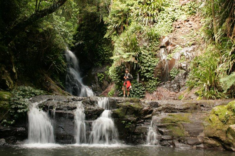 Elabana Falls Lamington NP