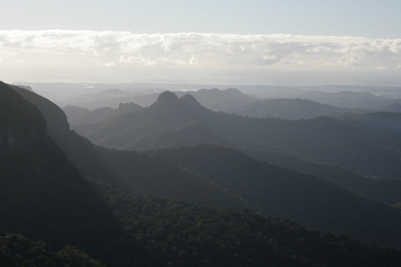 Best of All Lookout in Springbrook NP