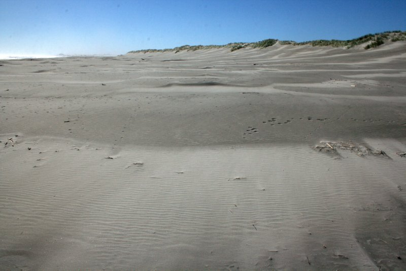 Outer Beaches of Farewell Spit
