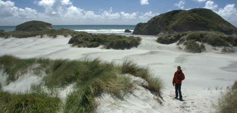 Sand Dunes at Wharariki Beach