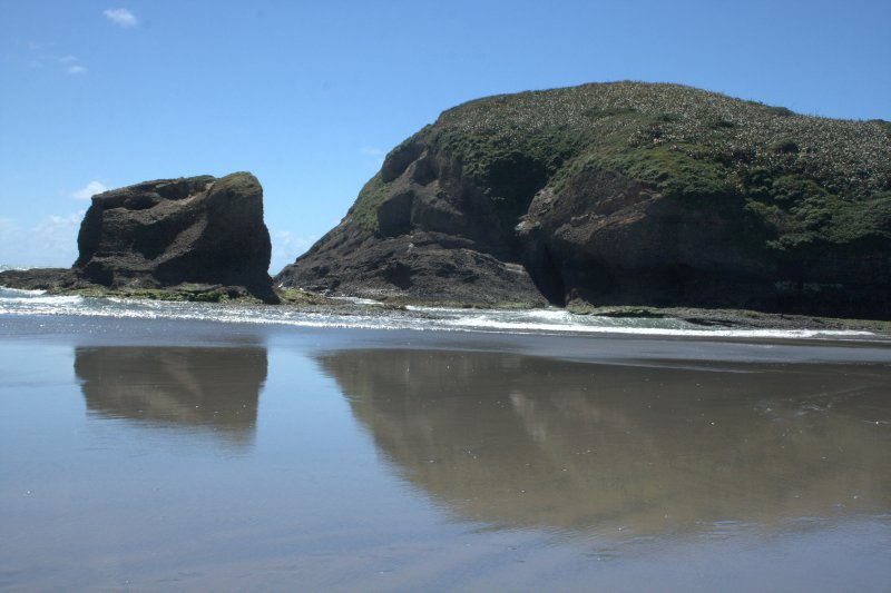 Wharariki Beach Reflections