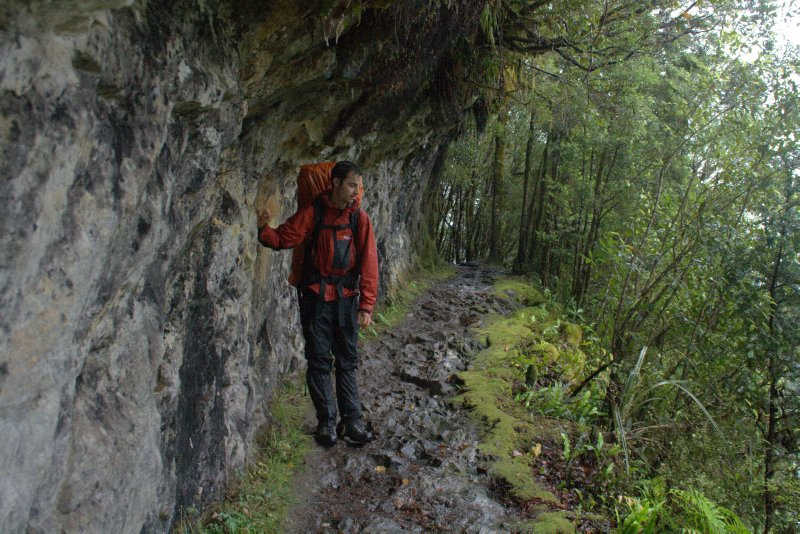 Oldest Part of Milford Track - Rock Chisled Path Completed in 1898