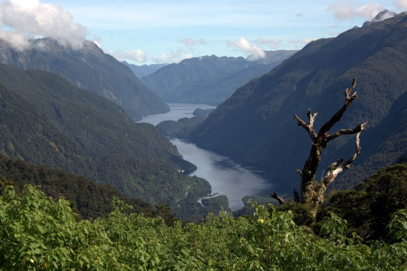 Doubtful Sound from Wilmot Pass