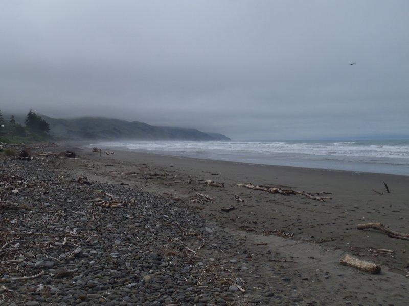 Foggy Gore Bay