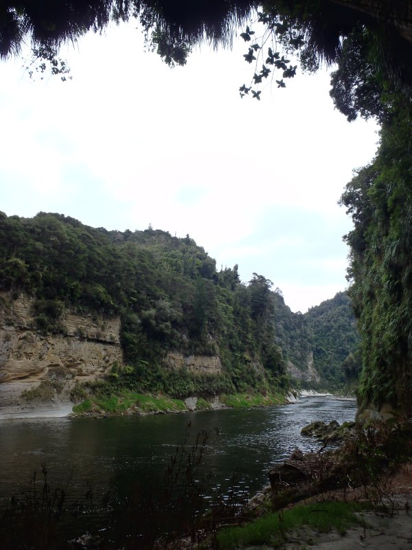 Looking Out of Cave Along Whanganui River