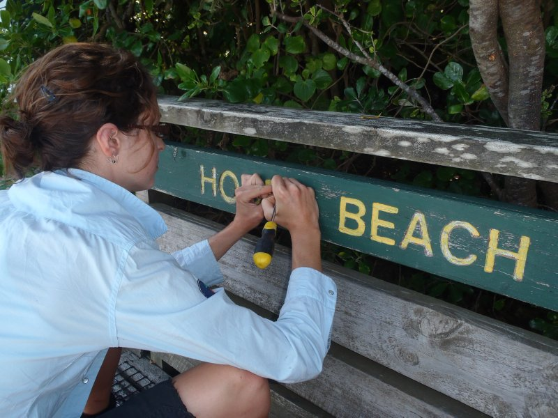 Painting Hobbs Beach Sign