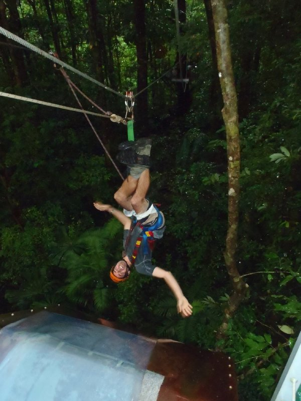 Zip-Lining in Daintree