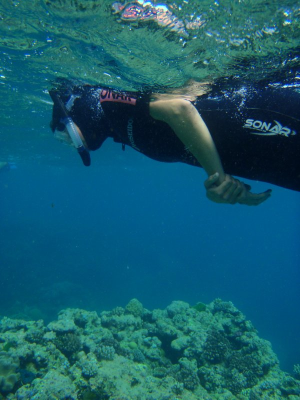 Julie Snorkelling The Great Barrier Reef - Agincourt Reef