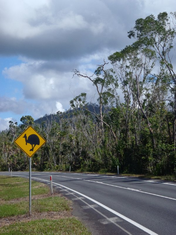 Cassowary Crossing Sign near Mission Beach