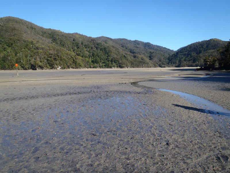 Torrent Bay Estuary