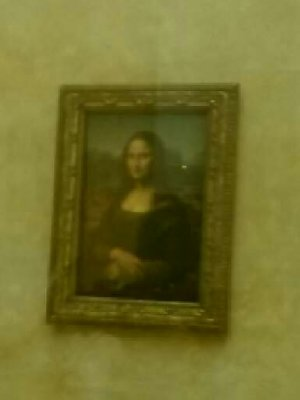 Yes, the famous Mona Lisa...took a while to get close enough for a pic because of the crowds