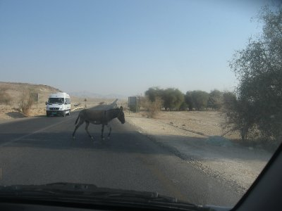 Driving from Jerusalem to the Galilee!!!